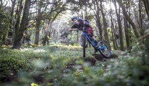 "«Trail Bike o Xc ""vitaminizzata""?» ? Bella domanda..."