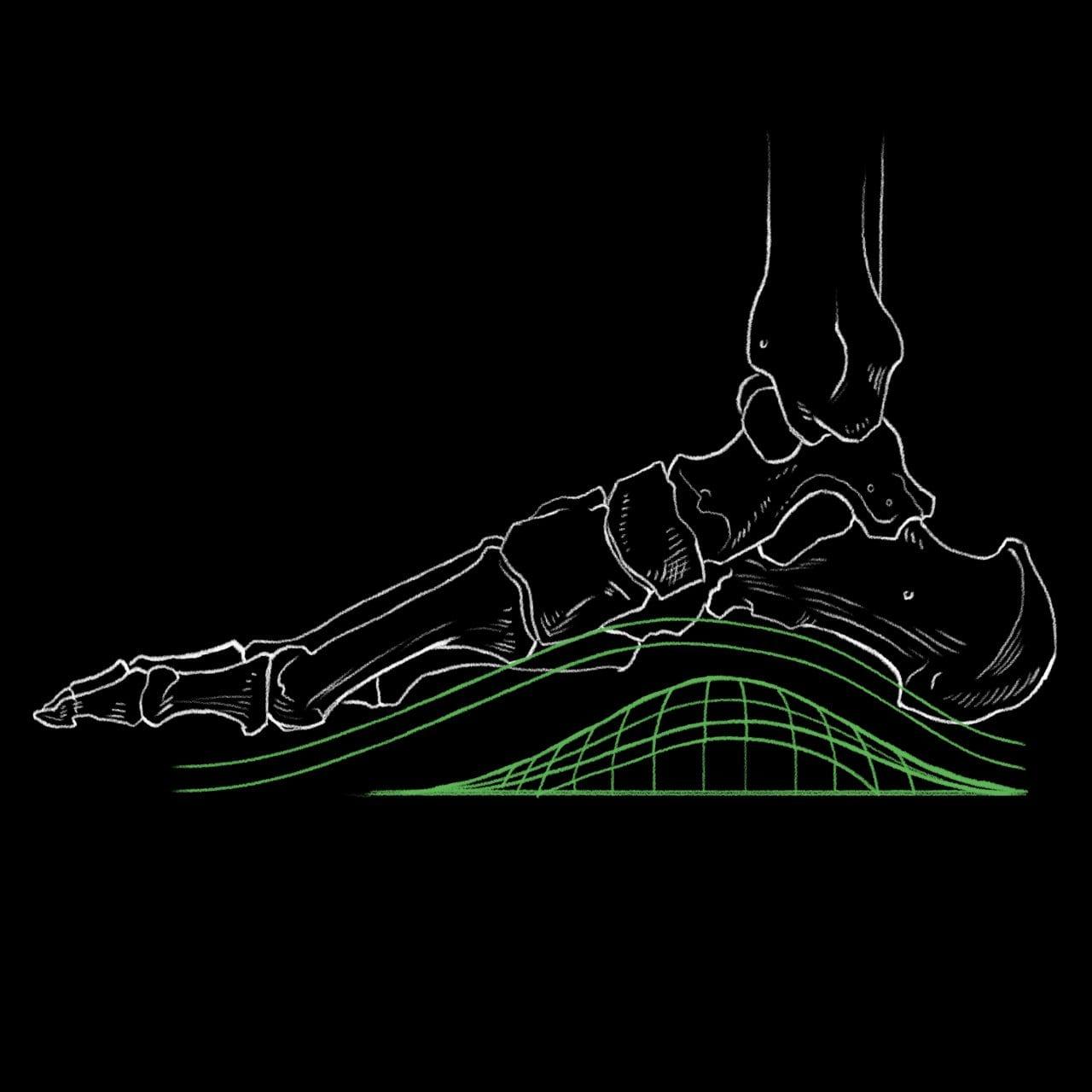Specialized Body Geometry