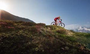 Alta Valtellina Bike Marathon ai nastri di partenza: i big in gara